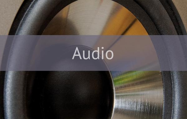 audio speaker label